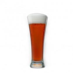 Cerveza Ambar del Sur
