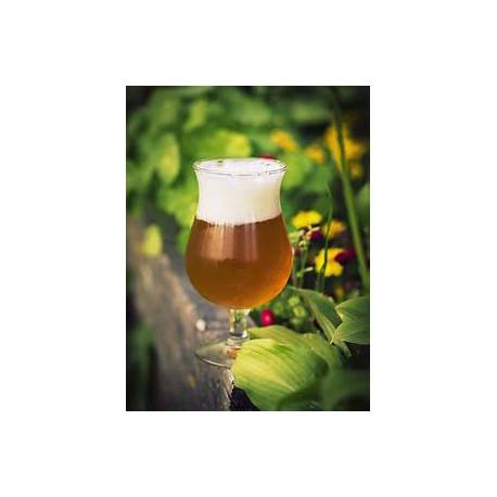 Cerveza Saison IPA